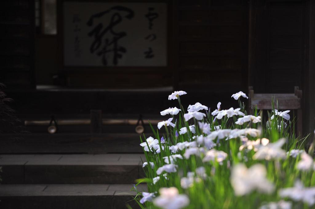 20100612_kaizoji6