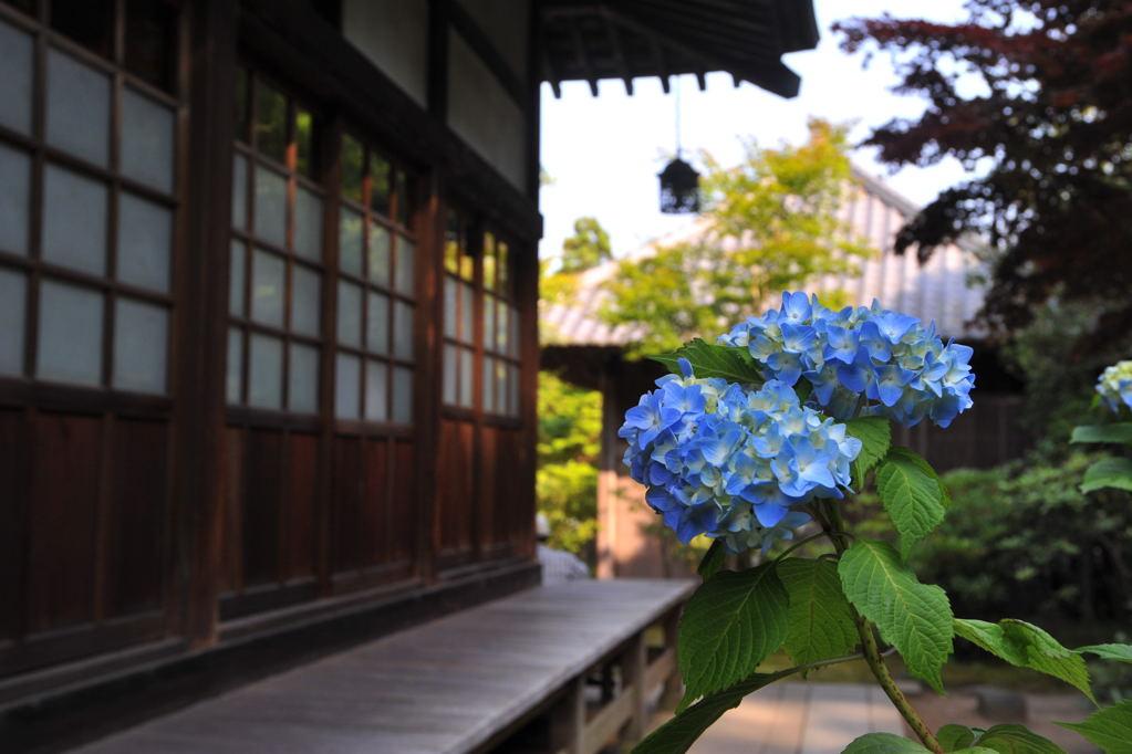 20100612_kaizoji7