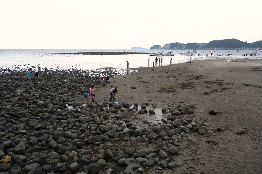 20100613_zaimokuza2