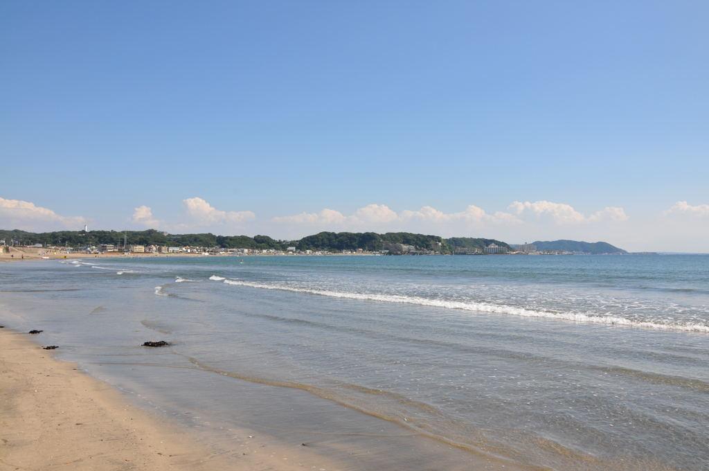 20100918_sakanoshita1
