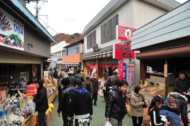 20101127_nagatoro5