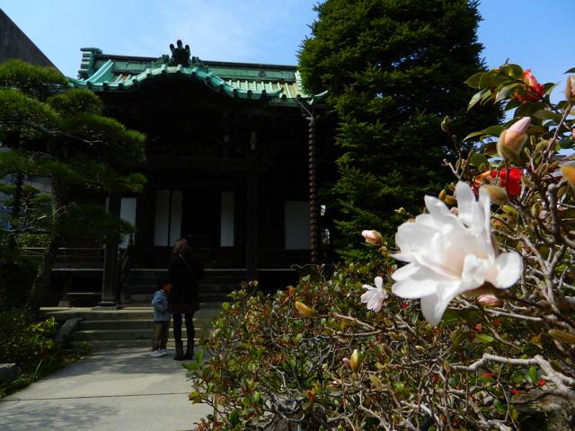 20110320_kamakura6