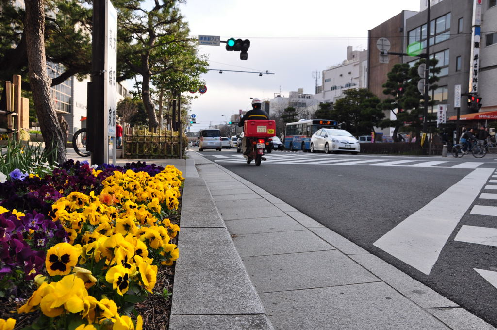 20110326_kamakura6