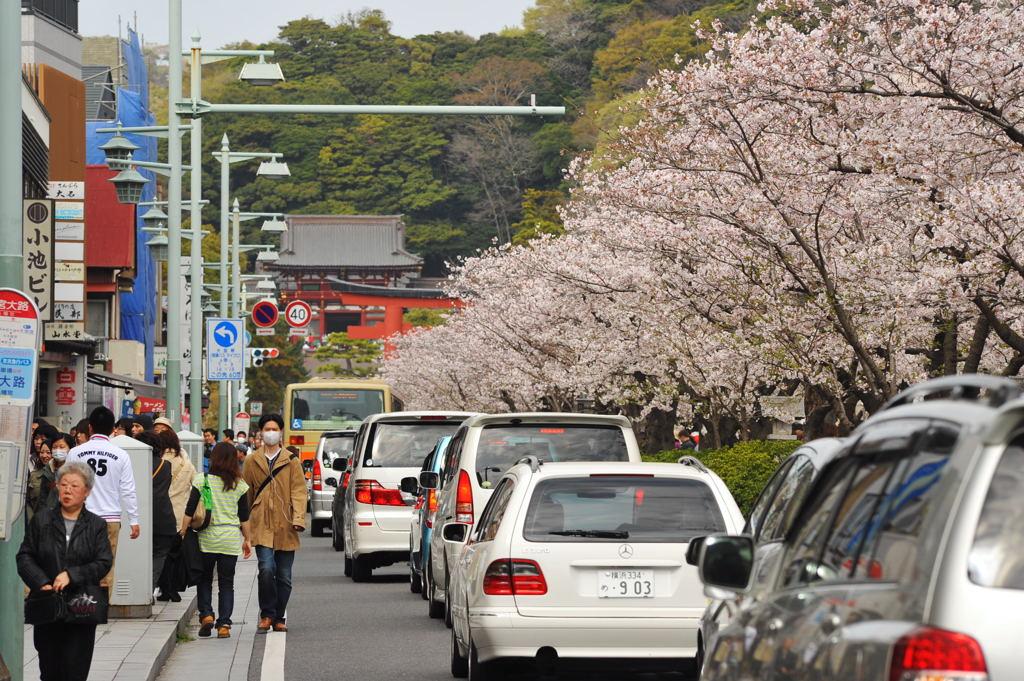 20110410_dankadura6