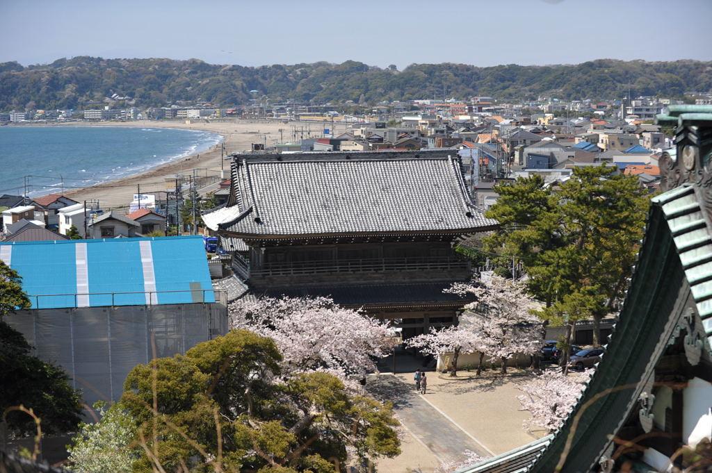 20110413_komyoji7