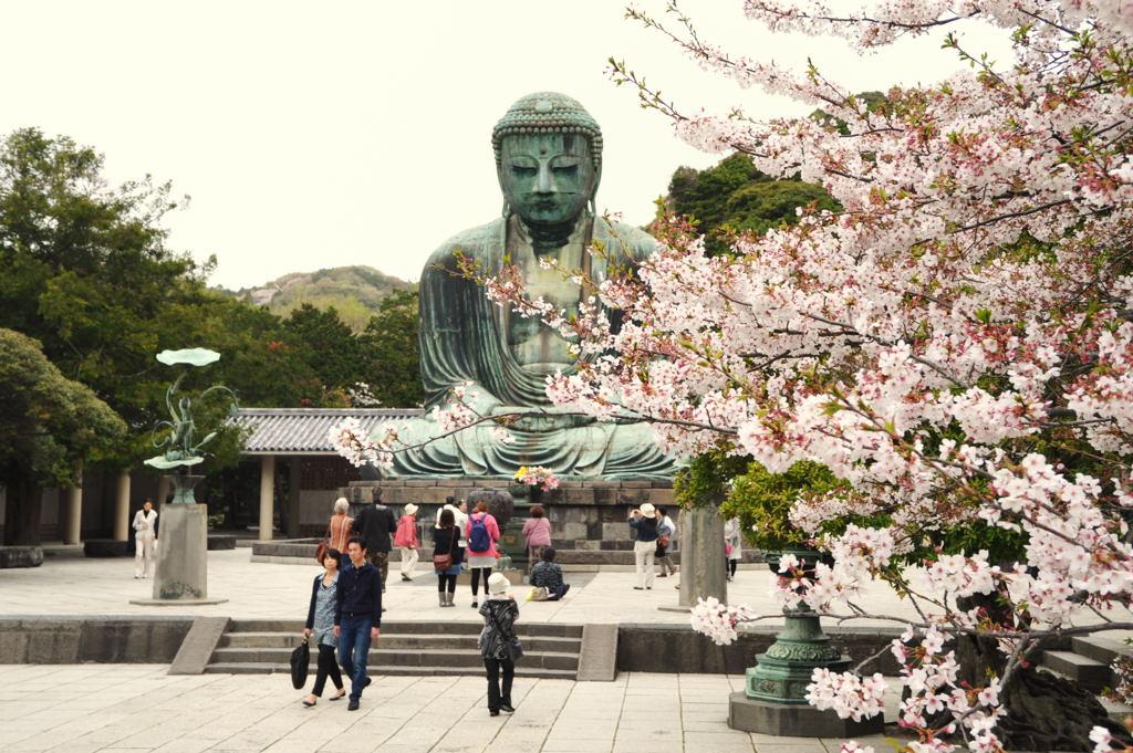 20110416_daibutsu2