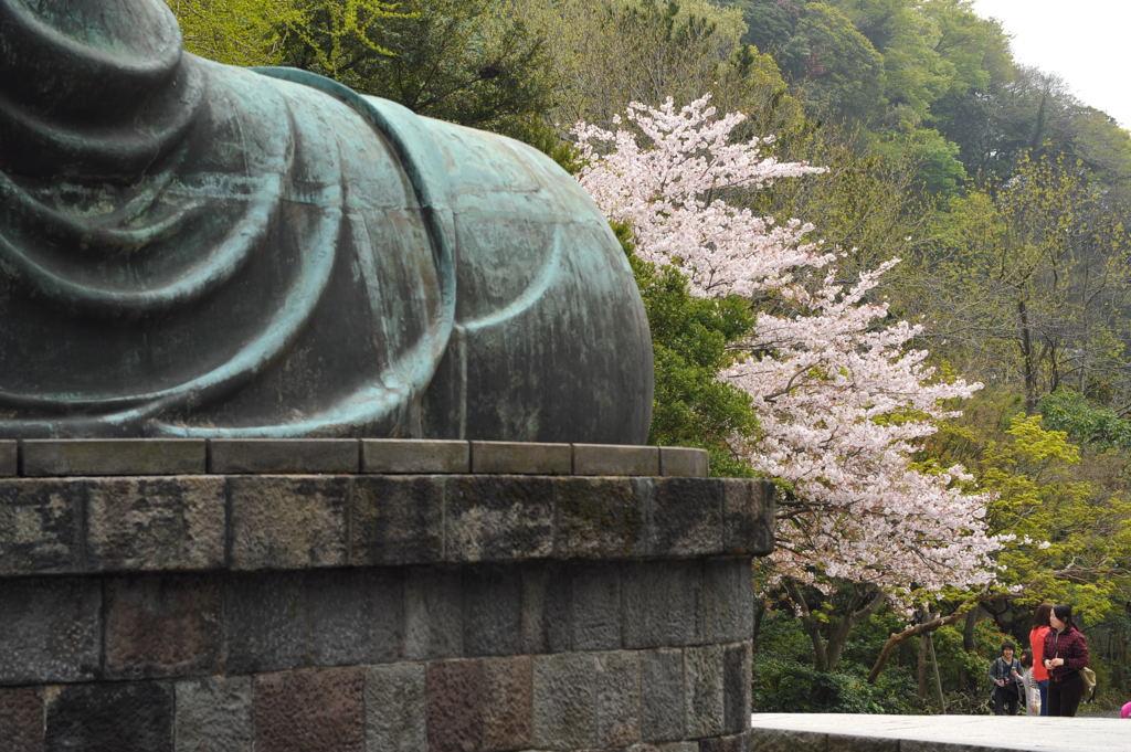 20110416_daibutsu5