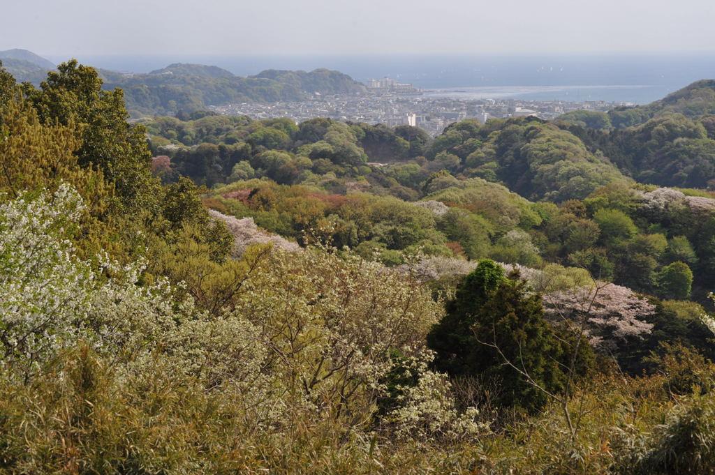 20110417_rokkokukenzan14