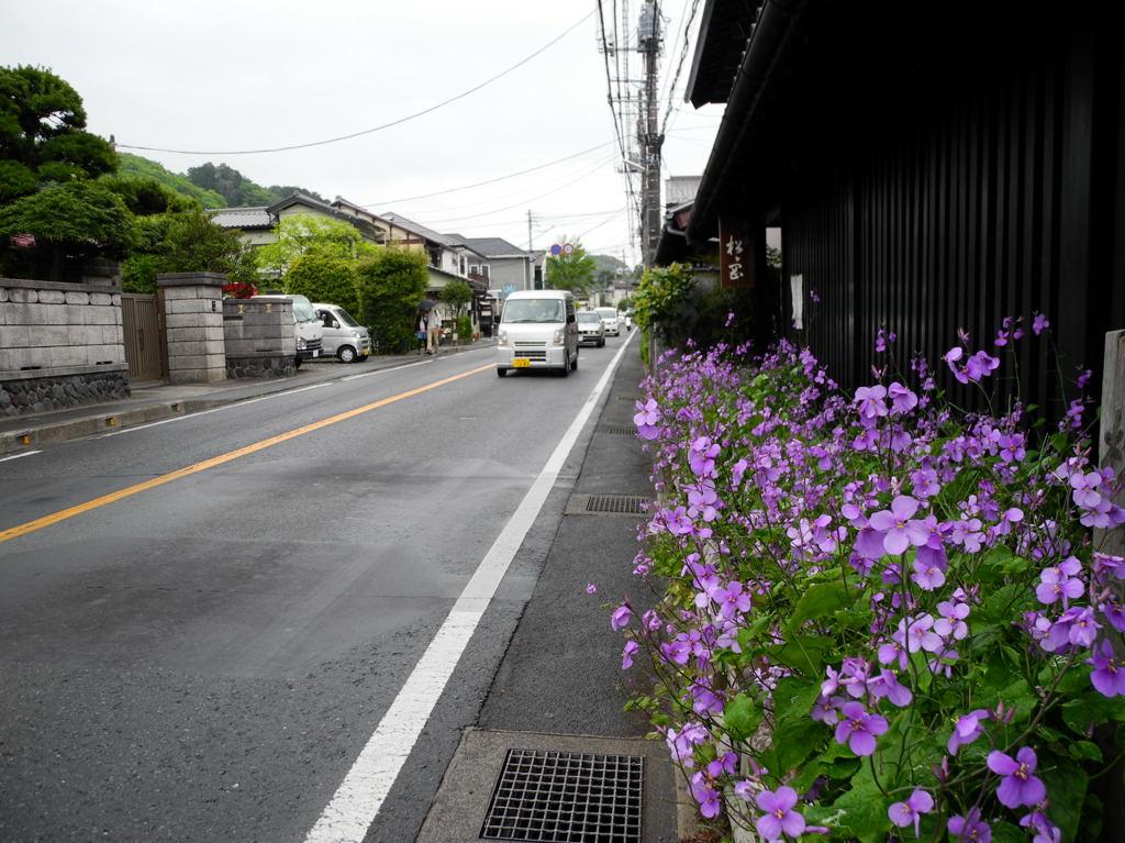 20110501_kitakamakura