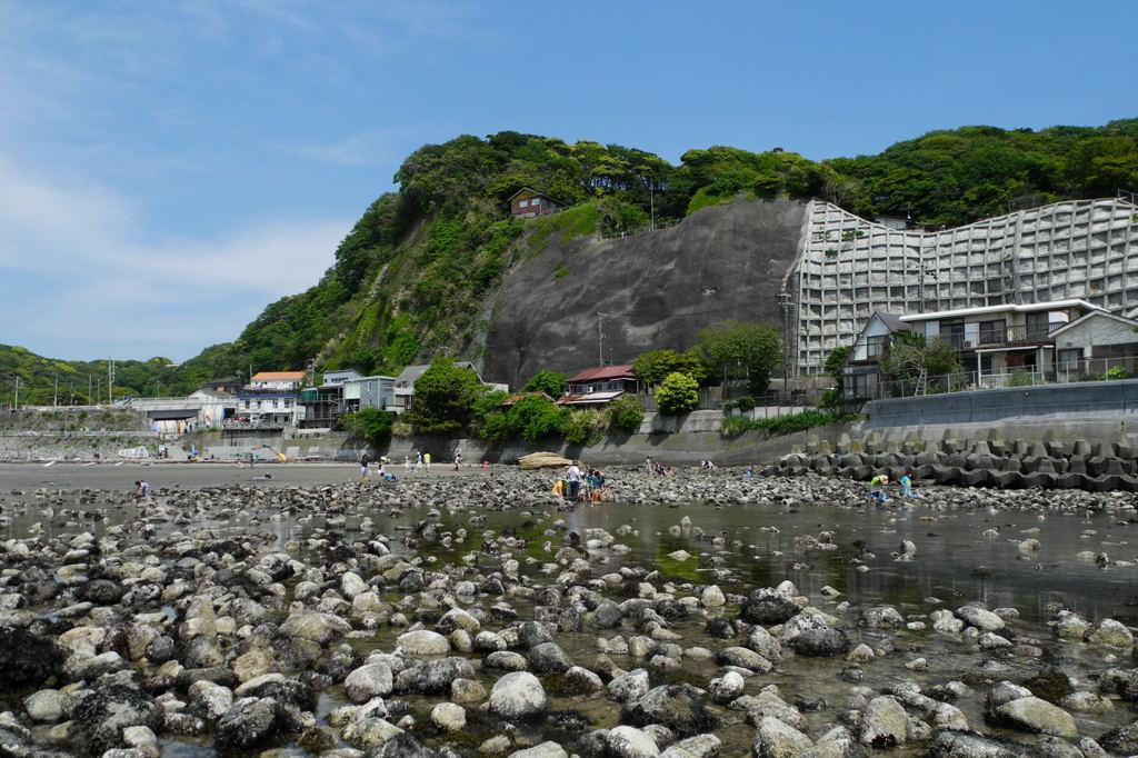 20110508_zaimokuza4