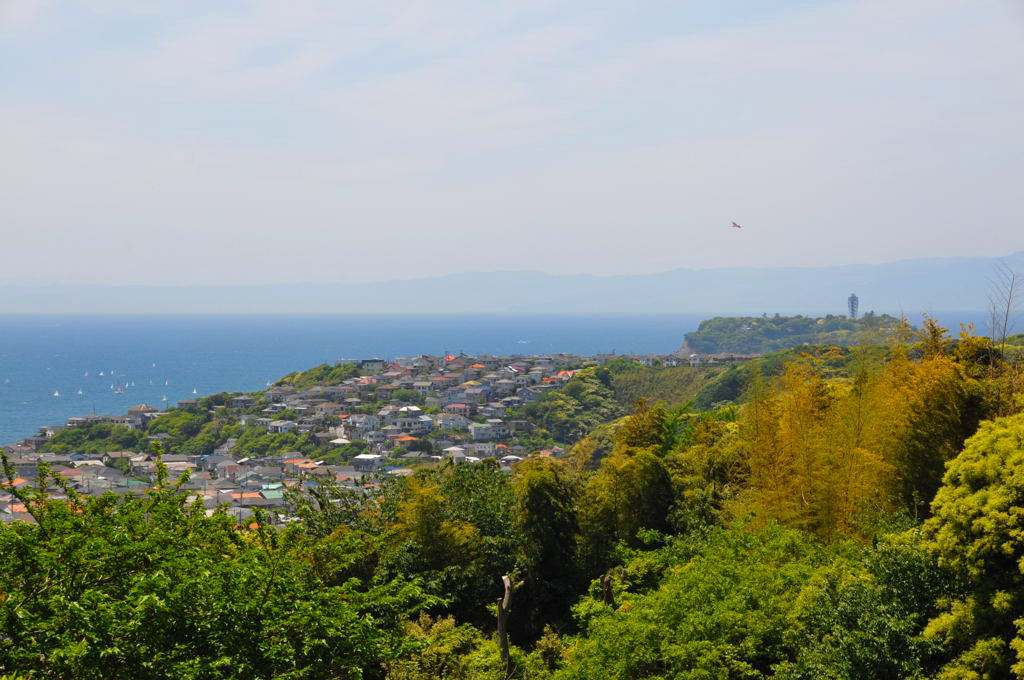 20110515_kamakurayama4