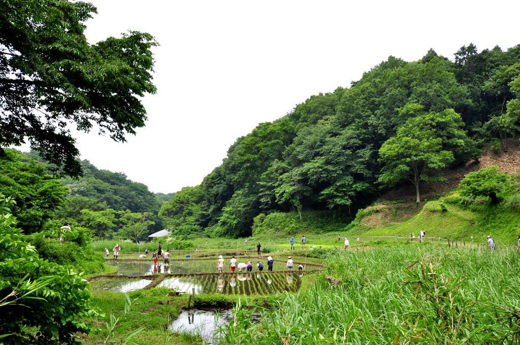 20110605_kurakubo6