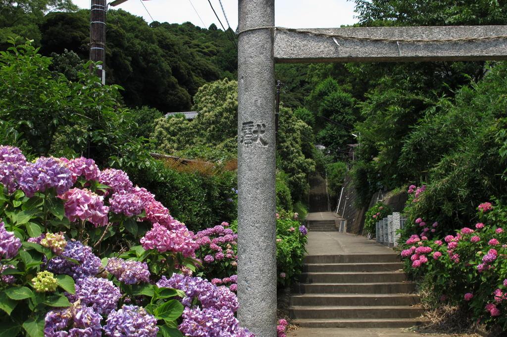 20110625_hakusan1